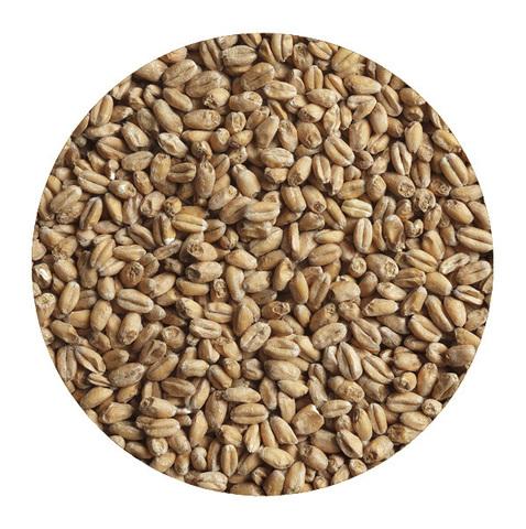 Солод «Пшеничный» Курск 1 кг