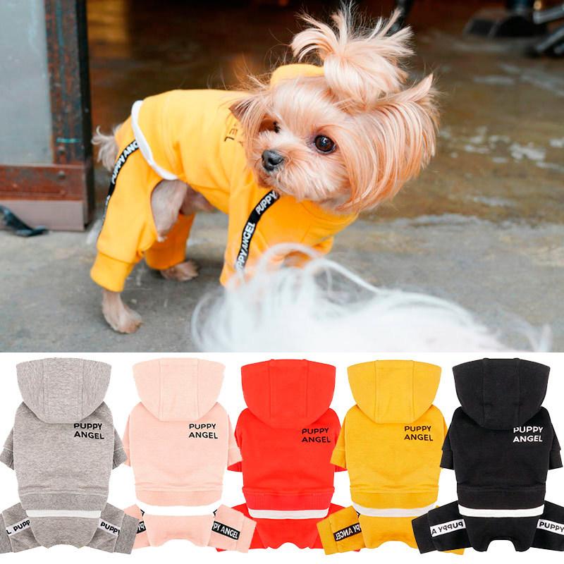 спортивные костюмы для маленьких собак