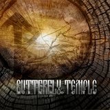 Butterfly Temple / Вечность (CD+DVD)