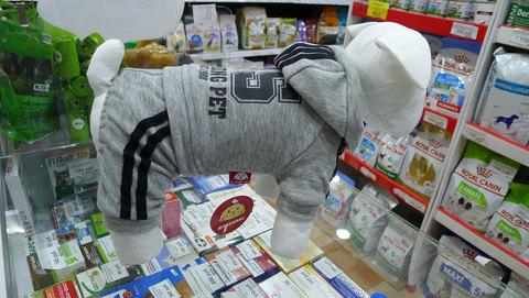 Спортивный костюм для мелких пород собак серый велюр,флис