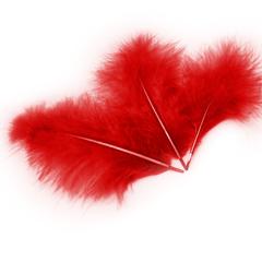 Перья Красные, 12-14 см 30 шт.