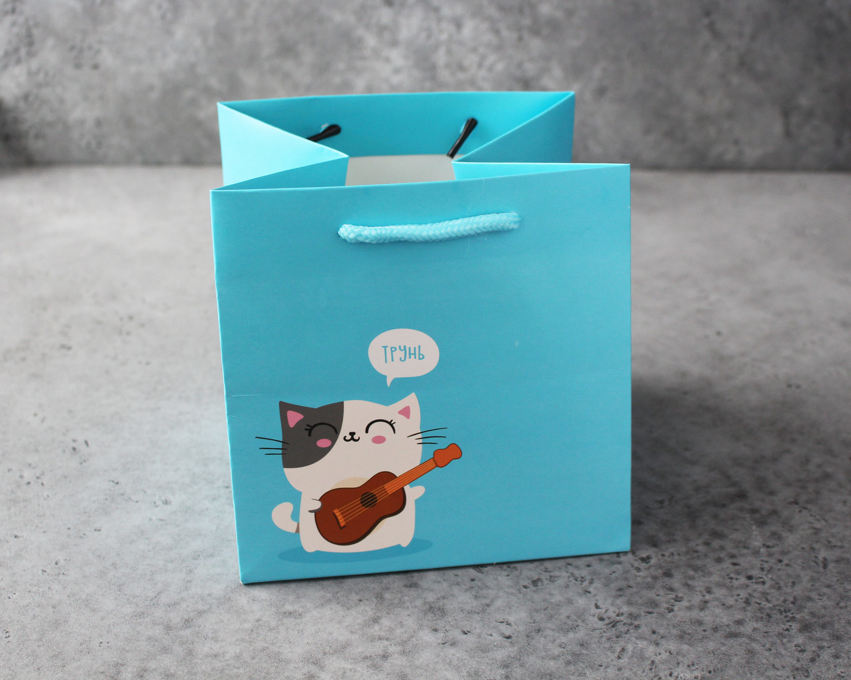 Пакет маленький «Котик с гитарой»