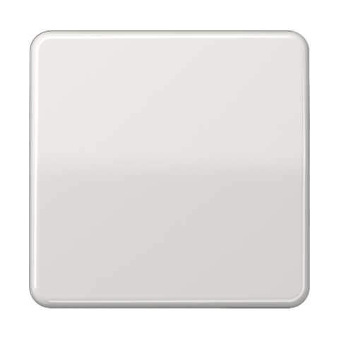 Выключатель одноклавишный. 10 A / 250 B ~. Цвет Блестящий светло серый. JUNG CD. 501U+CD590BFLG