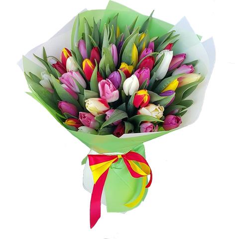 Букет из 51 микс тюльпана 1