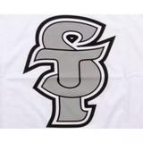 ST лого фото 2