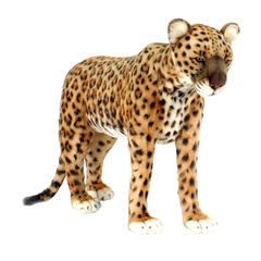 Hansa Леопард стоящий, 55 см (5526)