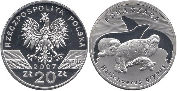 20 злотых 2007 год, Польша. Длинномордый тюлень. Животный мир. Серебро. PROOF