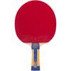 Ракетка для настольного тенниса ATEMI PRO 1000 CV