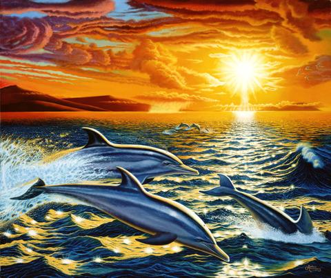 Картина раскраска по номерам 40x50 Дельфины на закате