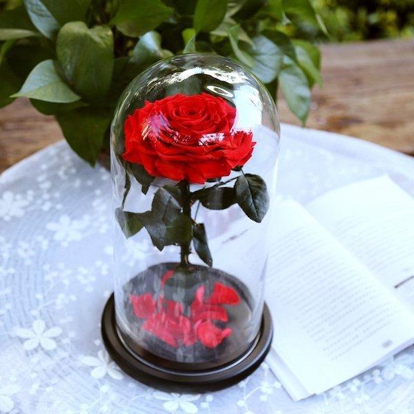 Каталог Роза в колбе Премиум rose.jpg