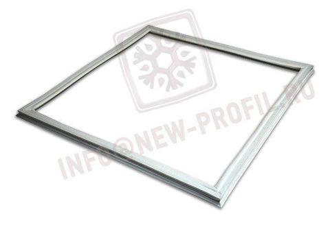 Уплотнитель 100*55см  для холодильника Норд DX 247,7 (холодильная камера) Профиль 015