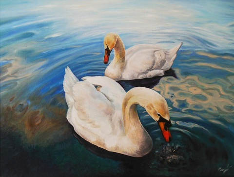 Картина раскраска по номерам 40x50 Два белых лебедя
