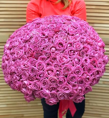 251 розовая роза 50 см #14422