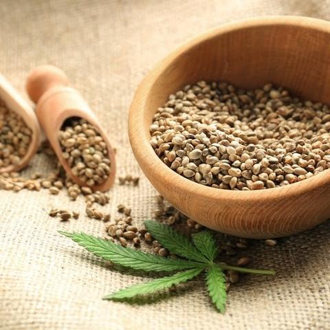 Семена конопли пищевой