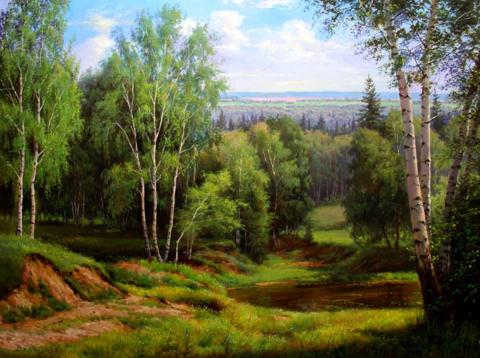 Картина раскраска по номерам 40x50 Густой березовый лес