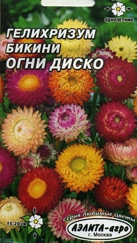 Семена Гелихризум Бикини Огни диско, Одн