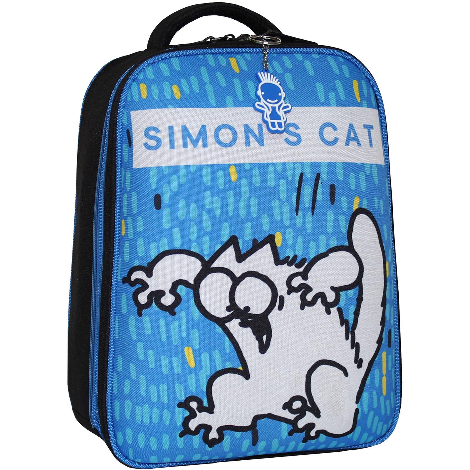 Школьные рюкзаки Рюкзак Bagland Turtle 17 л. сублимация 4к (0013466) IMG_8107_арт4к_.JPG