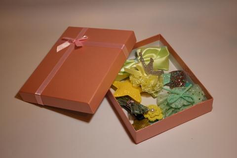 Набор заколок в подарочной коробке (арт.5002 жел)