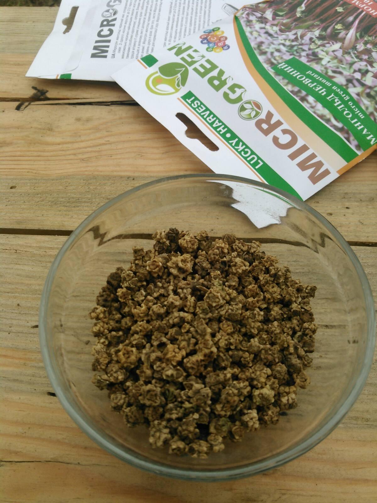 Семена Микрозелени Мангольд Красный, 10 г. LUCKY HARVEST (Украина)
