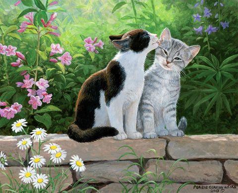 Картина раскраска по номерам 40x50 Поцелуй котиков