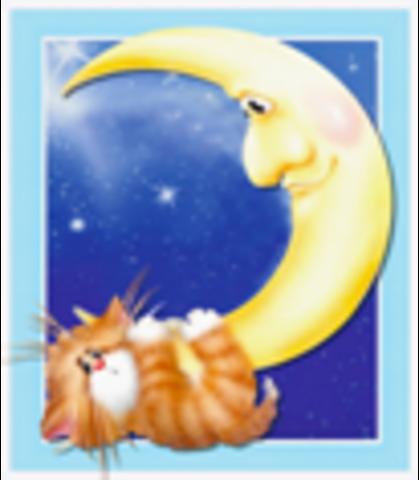 Алмазная Мозаика 20x30 Рыжий кот и месяц