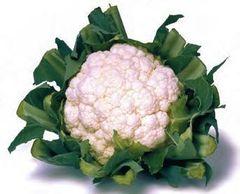 Кашмир F1 семена капусты цветной (Sakata / Саката)