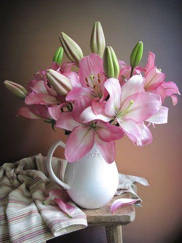 Картина раскраска по номерам 40x50 Розовые лилии распускаются в кувшине