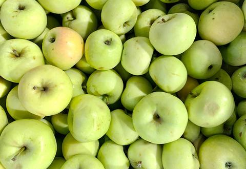 Яблоки Белый Налив, 1 кг