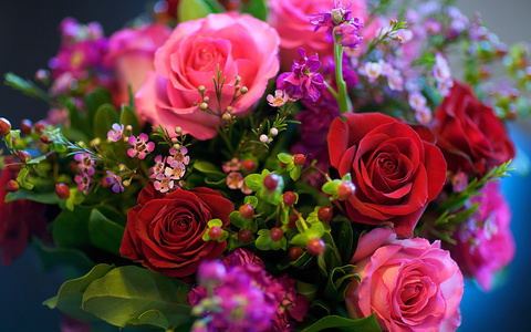 Алмазная Мозаика 30x40 Разноцветные розы