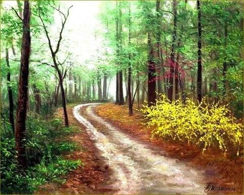 Картина раскраска по номерам 40x50 Дорога в лесу