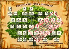 Родословное дерево , образец в книгу