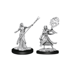 D&D Nolzur's Marvelous Miniatures - Female Elf Sorcerer