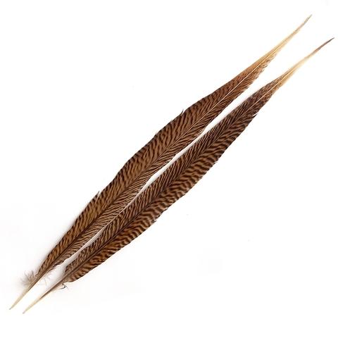 Хвостовое перо золотого фазана Gold Pheasant Centre Tail (35-40 см)