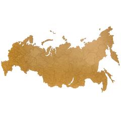 Карта-пазл 98х53см Mimi Wall Decoration 'Российская Федерация коричневая