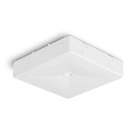 Светильник аварийного освещения ONTEC R M1U 301 NM ST – внешний вид