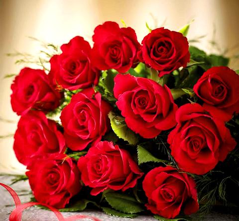 Картина раскраска по номерам 40x50 Букет красных роз