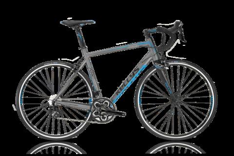 Kellys Arc 50 (2016) серый с голубым