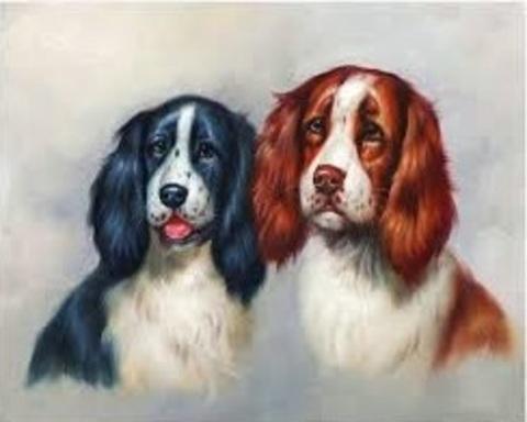 Алмазная Мозаика 30x40 Портрет двух собак (арт. S2761)