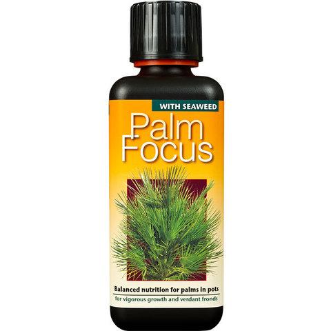 Palm Focus 300мл