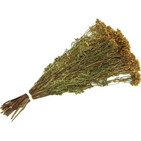 Сбор трав