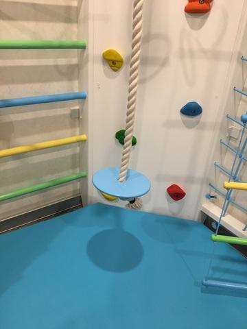 Диск-тарзанка для каната, цвет в ассортименте