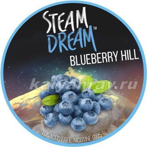 Steam Dream - Черника