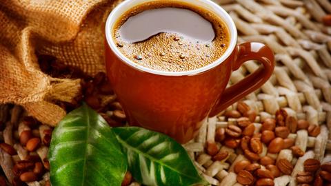 Картина раскраска по номерам 40x50 Чашка кофе с листьями