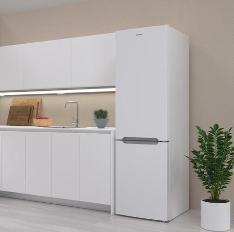 Холодильник Candy CCRN 6200 W