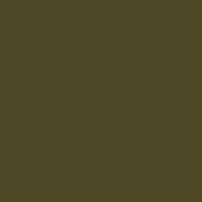 Пигмент Doreme 11 Olive