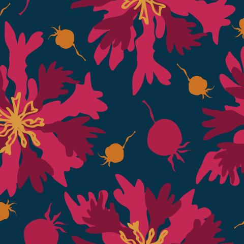 Яркие осенние цветы и ягоды на тёмно-синем фоне. Bright autumnal flowers and berries on dark blue background
