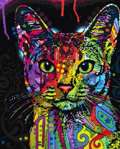 Картина раскраска по номерам 40x50 радужная кошка