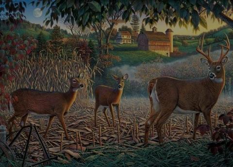 Алмазная Мозаика 40x50 Семья оленей на природе (арт. S464)