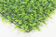 Травка - газон с мелким листом розы, пластиковая, 40*60 см.
