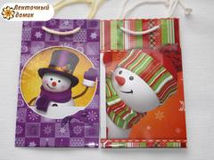 Набор Пакеты со снеговиком